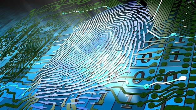 Metody biometryczne coraz częściej służą autoryzacji transakcji /©123RF/PICSEL