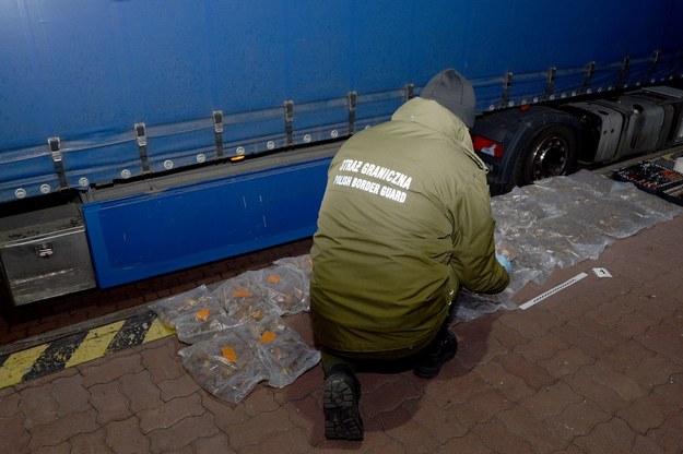Mężczyzna próbował przemycić ponad 47 kg bursztynu /Straż Graniczna