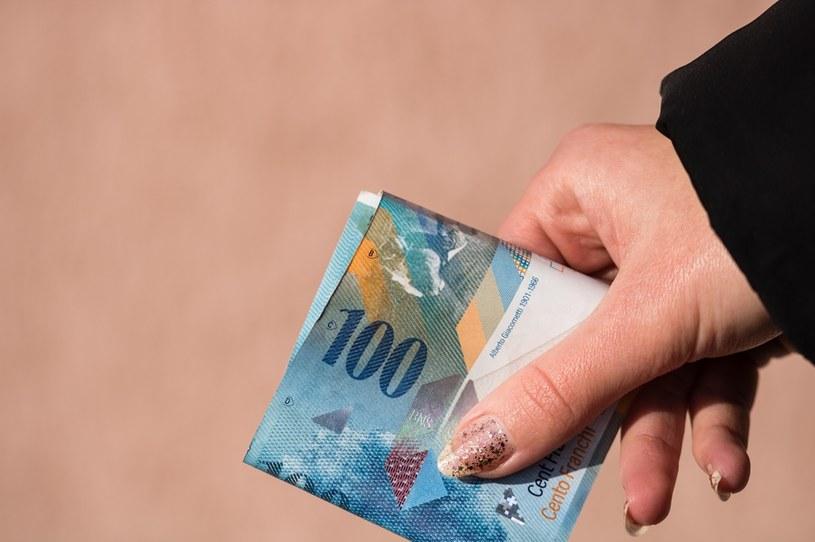 MF ważnym graczem w sporze o kredyty we frankach /123RF/PICSEL