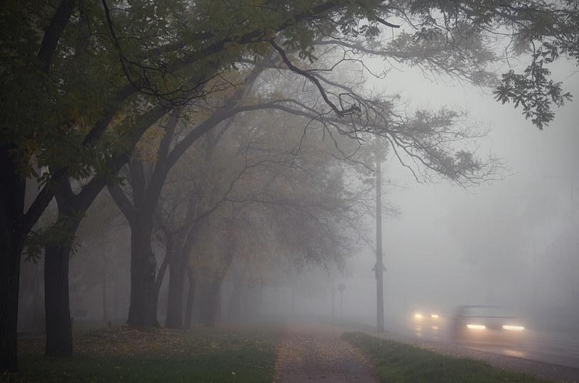 Mgła, zdjęcie ilustracyjne /stieberszabolcs /123RF/PICSEL