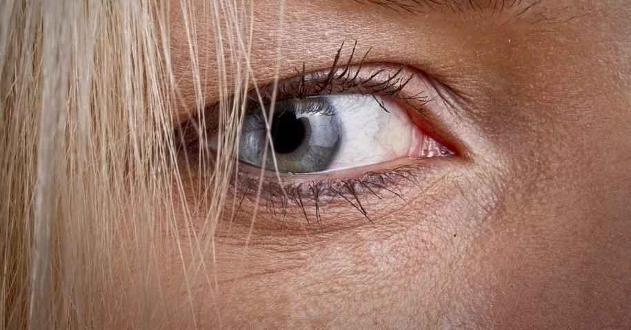 Mgnienie oka trwa 13 milisekund /Wojciech Pacewicz /PAP