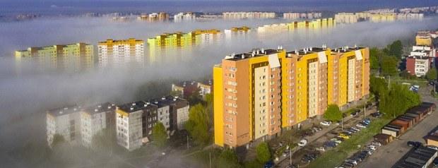 Miasta zielone czy miasta z betonu? /Robert Neumann /Agencja FORUM