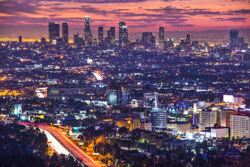 Miasto Aniołów to najludniejsze miasto w USA /123RF/PICSEL