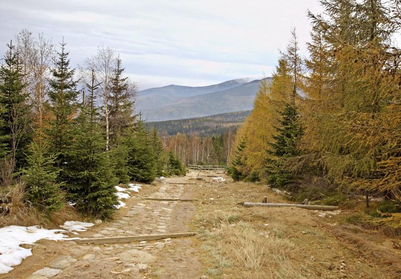 Miasto Karpacz leży u podnóża Śnieżki /123RF/PICSEL