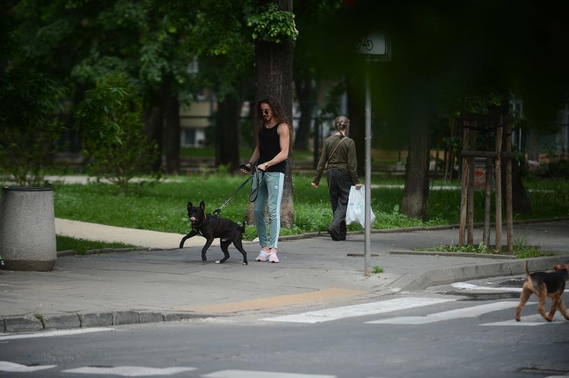Michał Szpak z psem /Marcin Wziontek /East News