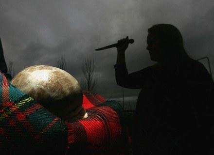 Między Szkotami i Anglikami rozgorzał spór o Haggis /Getty Images/Flash Press Media