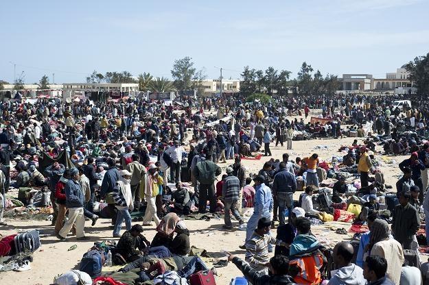 Międzynarodowa Organizacja ds. Migracji (IOM) rozpoczęła ewakuację około 5500 imigrantów z Bengazi /AFP