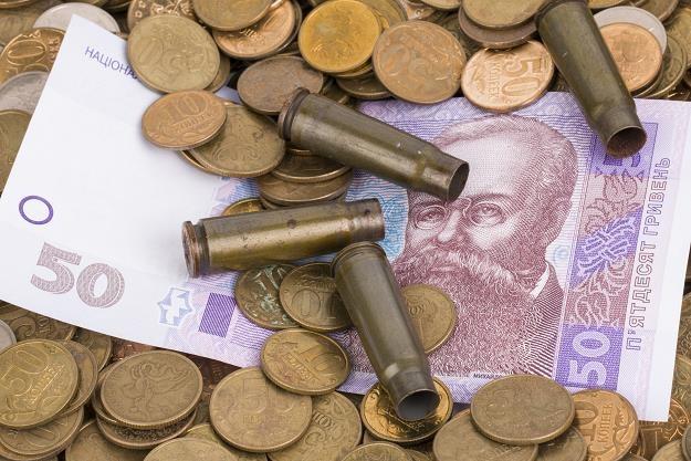 Międzynarodowe rezerwy Ukrainy są za małe dla spekulantów /©123RF/PICSEL