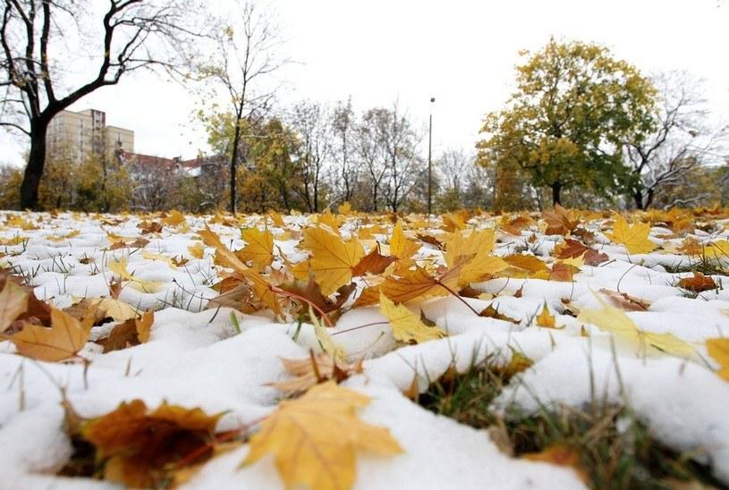 Miejscami popada śnieg /East News