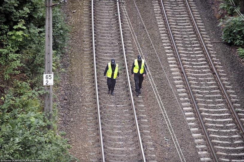 """Miejsce, gdzie może znajdować się """"złoty pociąg"""". /Natalia Dobryszycka /East News"""