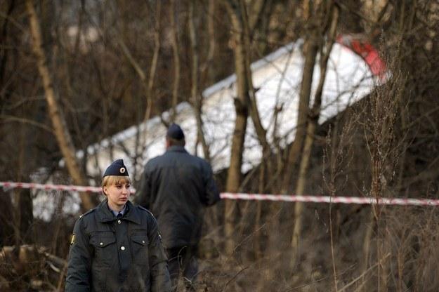 Miejsce katastrofy pod Smoleńskiem /AFP