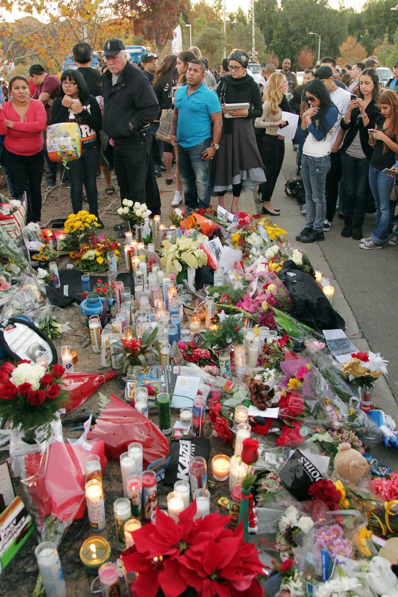 Miejsce katastrofy, w której zginął Paul Walker. /David Buchan /Getty Images