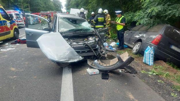 Miejsce tragicznego wypadku na drodze krajowej nr 11 w okolicach miejscowości Budzyń /PAP/KPP Chodzież /