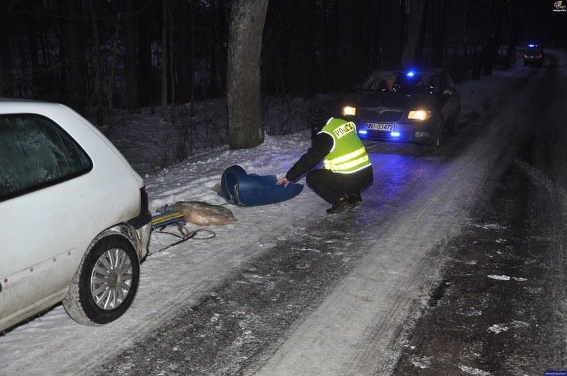 Miejsce tragicznego wypadku /Policja