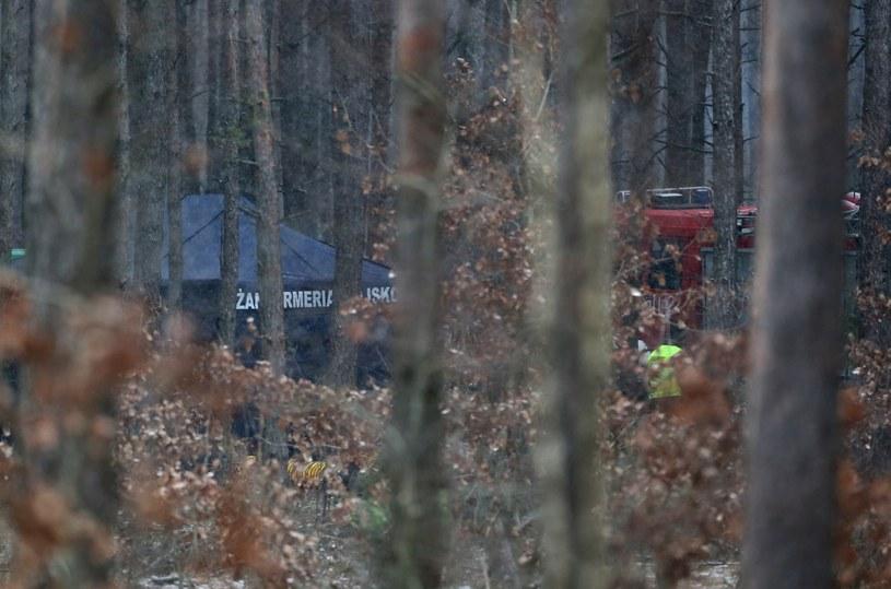 Miejsce wypadku MIG-29 /Tomasz Radzik /East News