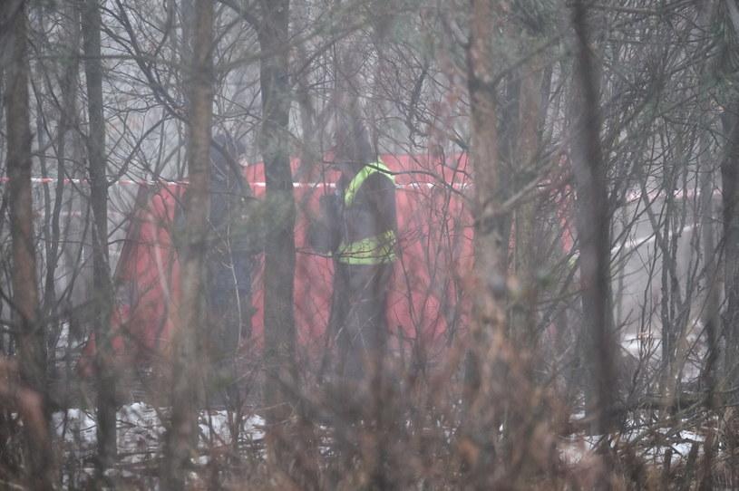 Miejsce wypadku prywatnego śmigłowca w pobliżu rzeki Dokawy w okolicach Pszczyny (woj. śląskie) / Andrzej Grygiel    /PAP