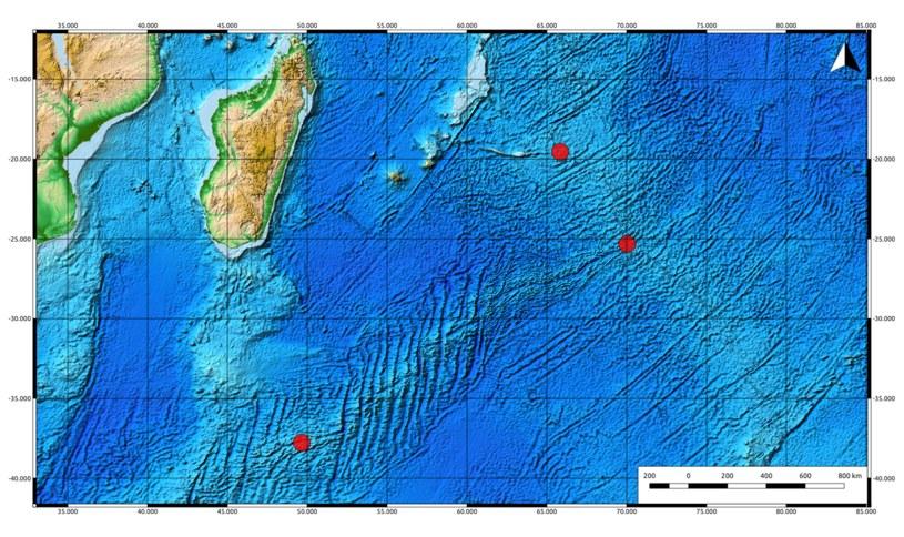 Miejsce występowania gatunku Chrysomallon squamiferum na Oceanie Indyjskim /Wikimedia Commons /domena publiczna