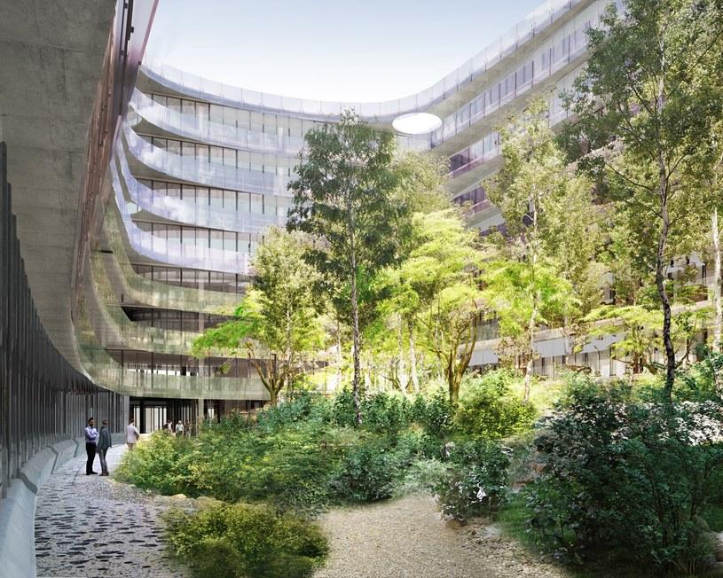 """""""Miejski las"""" w patio ma stanowić magnes dla turystów i mieszkańców /materiały prasowe"""