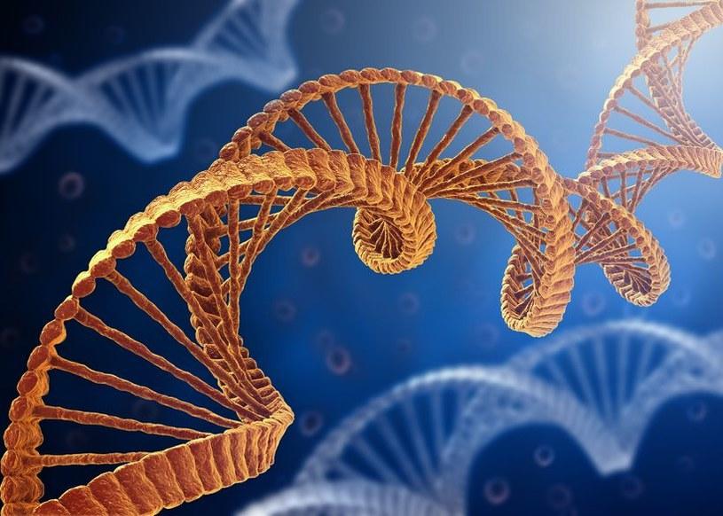 Mięsak nosa i zatok przynosowych powstaje w wyniku połączenia genów PAX3 i MAML3 /123RF/PICSEL
