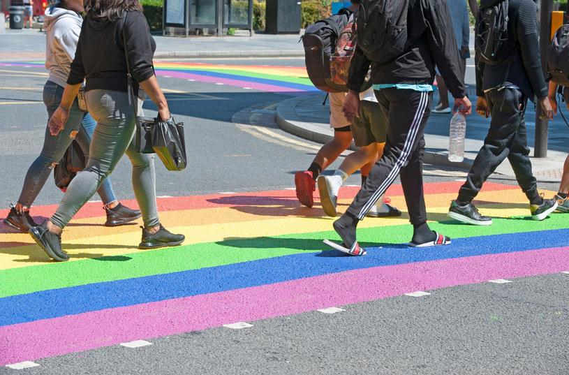 """""""Miesiąc Dumy LGBT"""" obchodzony jest w czerwcu celem upamiętnienia zamieszek w Stonewall, do których doszło w czerwcu 1969 roku, zdj. ilustracyjne /Grant Falvey/LNP/REX /East News"""