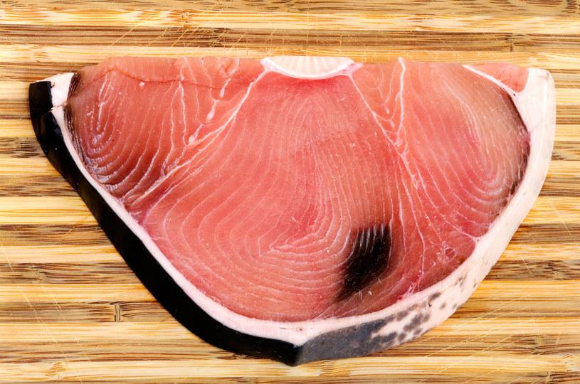 mięso z rekina /© Photogenica
