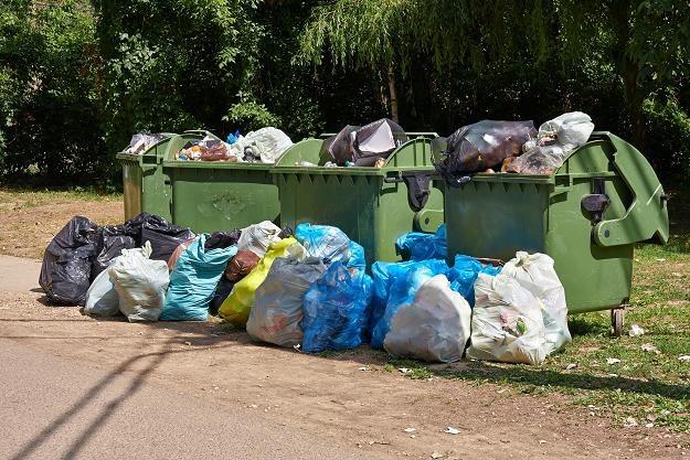 Mieszkańcy, którzy nie segregują śmieci, zapłacą 50 zł miesięcznie /©123RF/PICSEL