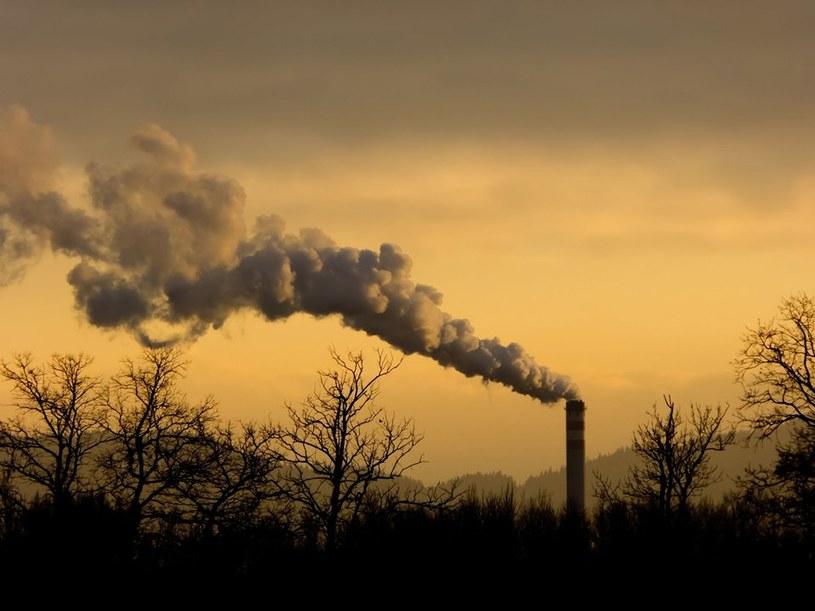 Mieszkańcy Oświęcimia od lat walczą ze smrodem /123RF/PICSEL
