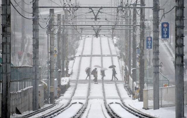 Mieszkańcy Tokio walczą z atakiem zimy /FRANCK ROBICHON /PAP/EPA