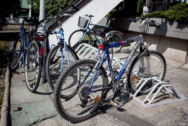 Mieszkańcy zdecydują, czy chcą więcej stojaków na rowery /Michał Walczak /PAP