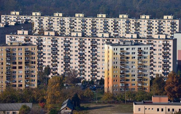 Mieszkania z wielkiej płyty wciąż cieszą sie popularnością /©123RF/PICSEL