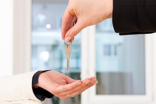 Mieszkanie plus uzupełnia rynek o brakujący element - mieszkania o niższej cenie najmu /©123RF/PICSEL