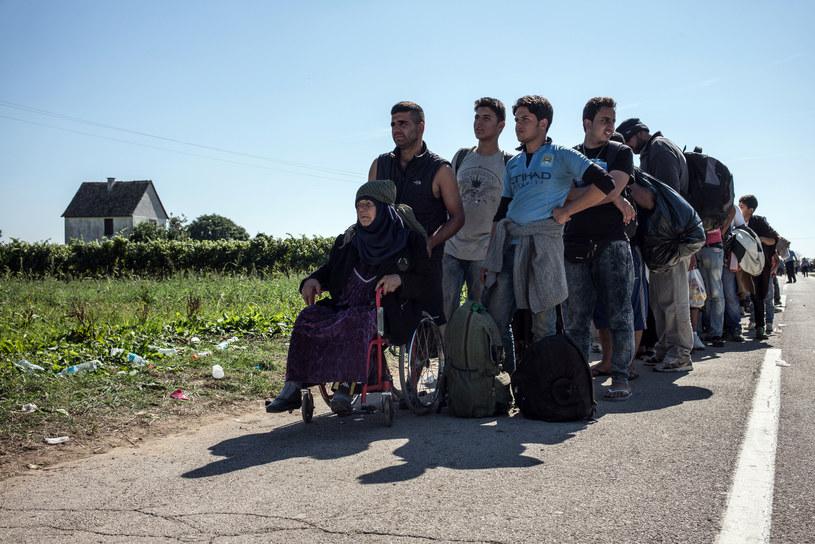 Migranci na granicy Chorwacji /AFP