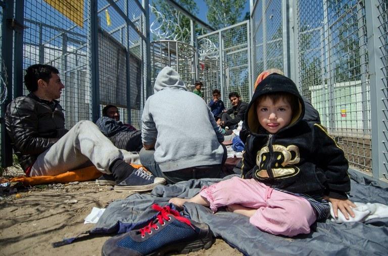 Migranci na granicy węgierskiej /AFP