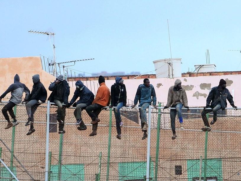 Migranci siedzący na ogrodzeniu między hiszpańską enklawą Melillą i Marokiem - zdjęcie z 2015 roku, ilustracyjne /AFP