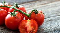 Mikołaj Rey w krainie pomidora. Co można z nich przygotować?