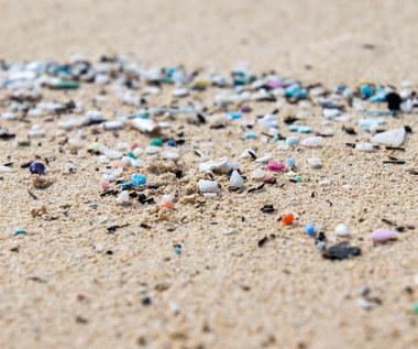 Mikroplastik w żywności. Dlaczego jest groźny? Które produkty są nim naszpikowane?
