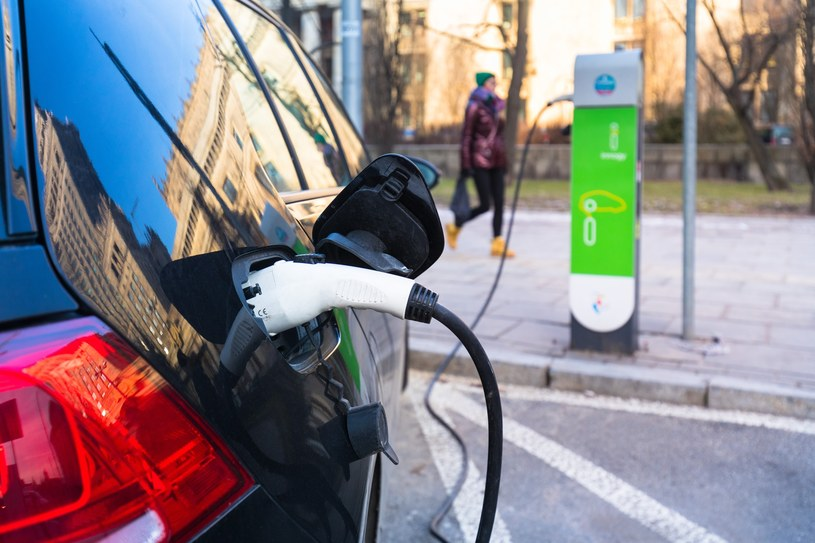 Milion aut na prąd czy 300 tys. aut na prąd? Jedna i druga liczba to fantasmagorie /Arkadiusz Ziółek /East News