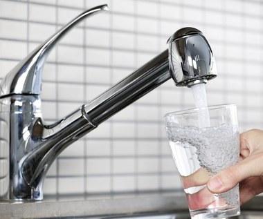 Miliony bakterii oczyszczają wodę w naszych kranach
