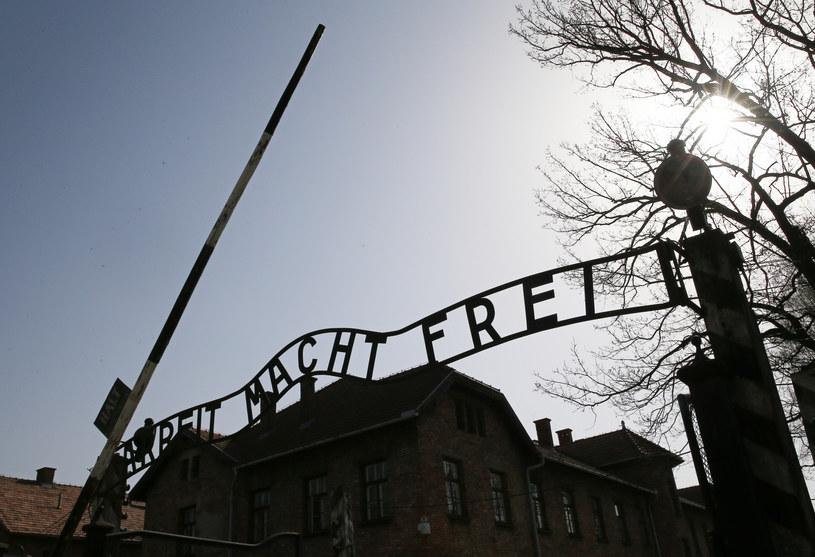 Miłość Davida Wisni i Helen Spitzer narodziła się w piekle Auschwitz /Damian Klamka /East News