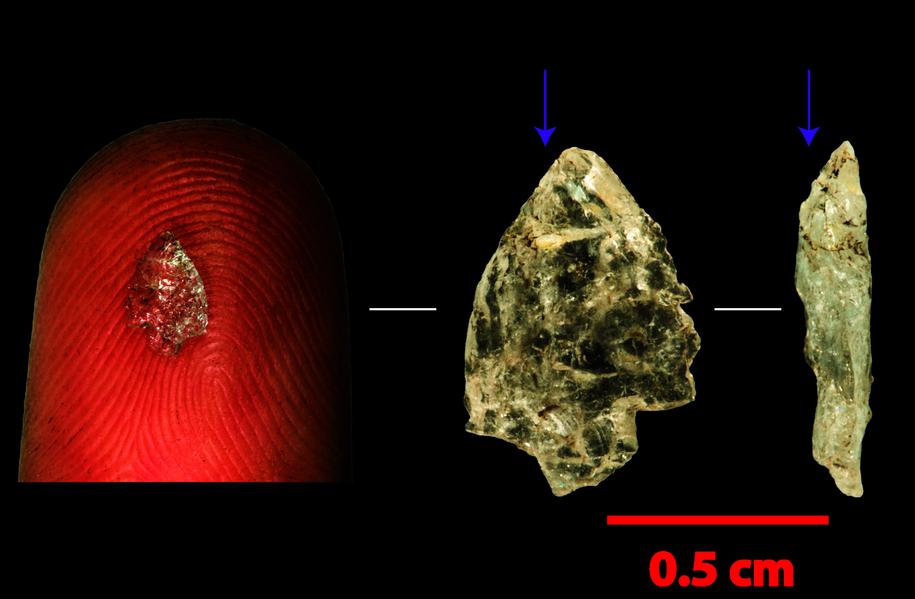 Miniaturowe krystaliczne ostrze z Boomplaas w RPA /Justin Pargeter /Materiały prasowe