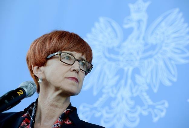 Minister Elżbieta Rafalska /PAP