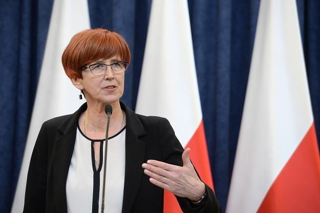 Minister rodziny, pracy i polityki społecznej Elżbieta Rafalska /PAP