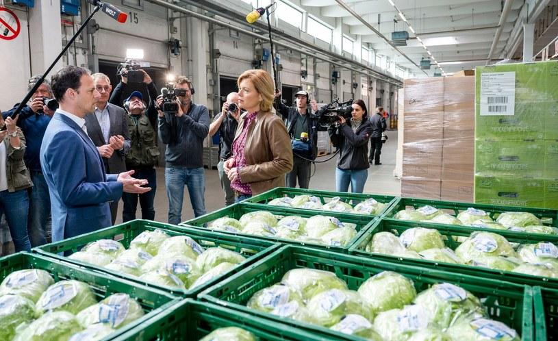 Minister rolnictwa Julia Kloeckner (nz) chce zatrudnić w rolnictwie ubiegające się o azyl w RFN bezrobotne osoby, zwłaszcza z Europy Wschodniej /AFP