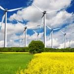 Ministerstwo Klimatu: W ciągu kilku lat Polska stanie się wielkim placem budowy odnawialnych źródeł energii