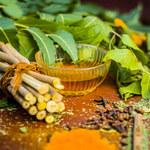Miodla indyjska: Zwalcza trądzik i hamuje starzenie się skóry