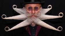 Mistrzostwa świata dla brodaczy