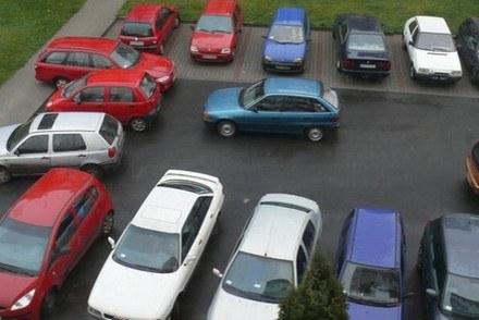 Mistrzowie parkowania /