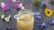 Mleczko pszczele to eliksir długowieczności