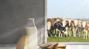 Mleko i jego przetwory: zdrowe czy niebezpieczne?