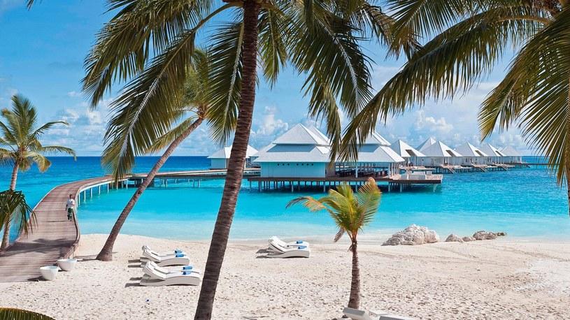 Mlethud – Malediwy, Atol Ari, Hotel Diamonds Thudufushi /materiały prasowe